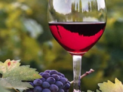 Know about wine tour!!