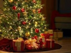 Want to drop a size by X-Mas, follow celebs' diet