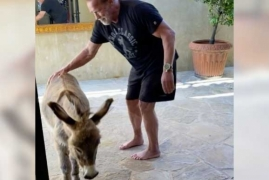 Arnold Schwarzenegger works out with pet donkey